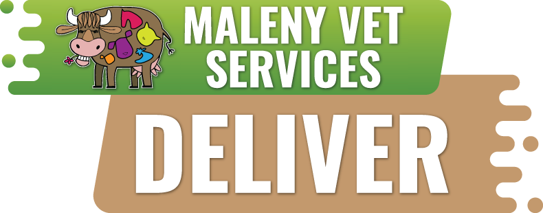Maleny Vet Services Now Deliver